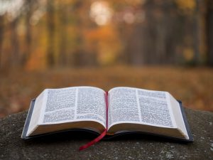 An open Bible in focus in front of soft focussed autumnal trees in the background front of a